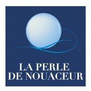 logo P2N-NEW2017